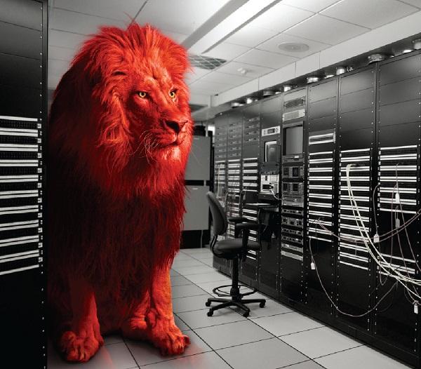 watchguard, malware, utm, DLP, antivirus, Saas